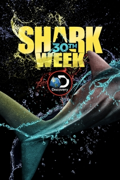 sharkwk3